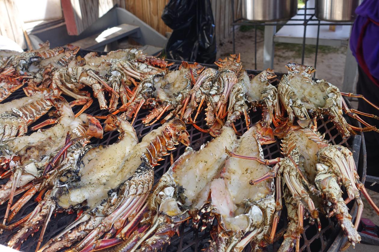anguilla-1130-festival-del-mar-kreeften