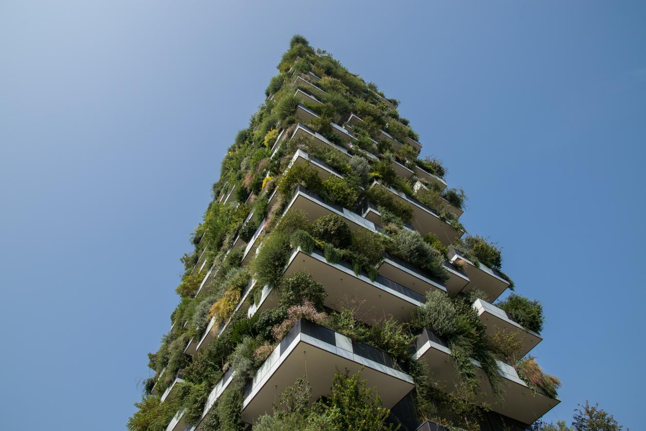 verticale-bos