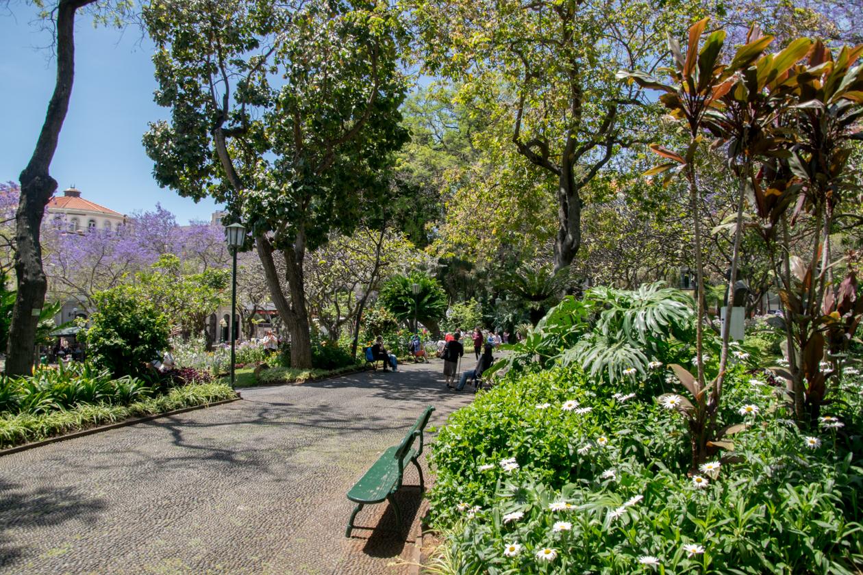 jardim-sao-fransisco