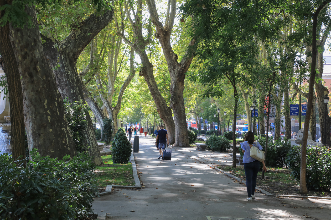 madrid-1455-paseo-del-prado