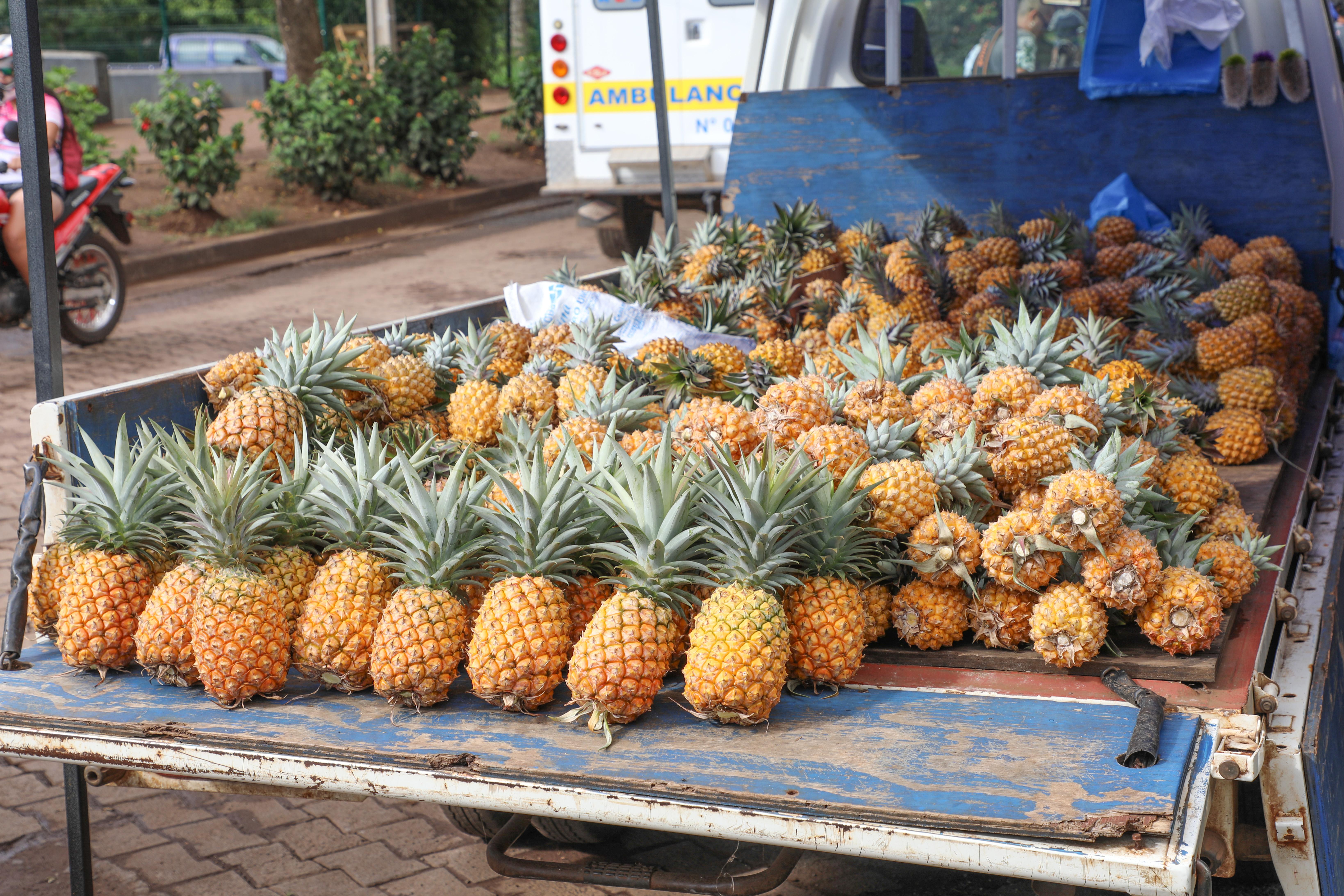 Ananasverkoop in Atumu Tekena