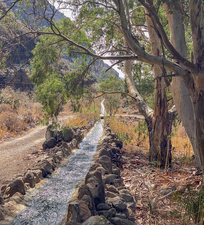 water in Barranco de Guayadeque